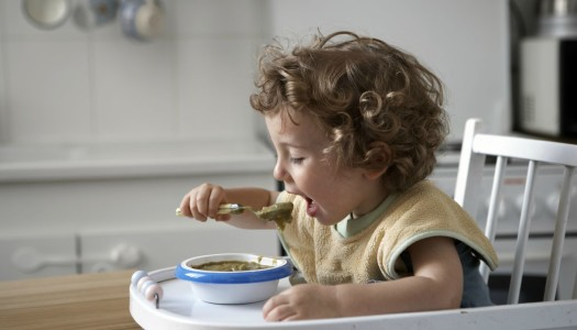Baby Led Weaning – Letting Your Infant Self-Feed